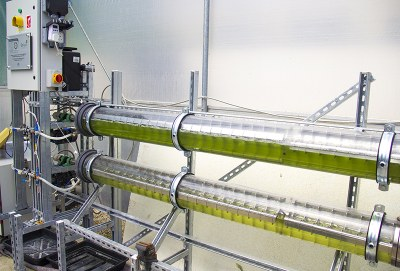 IBBE Cambridge Algae Machine