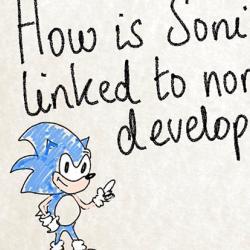 Sonic the Headhog and the Brain presentation slide